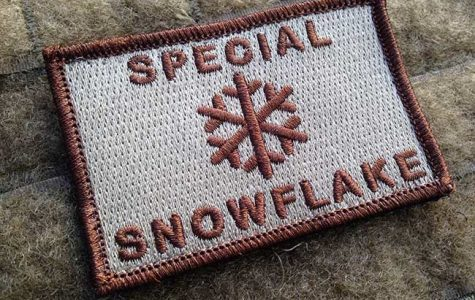 Letter from a snowflake
