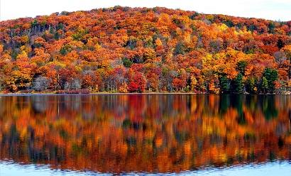 Viewpoint: Fall Aficionados Gather Here