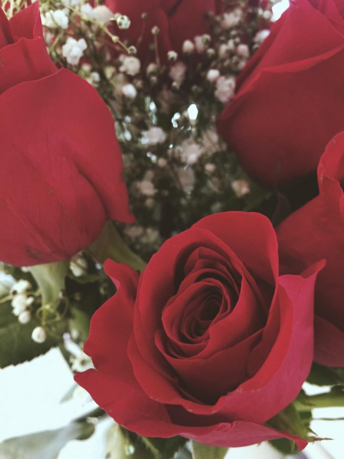 Viewpoint: Valentine's Day Is for Everyone