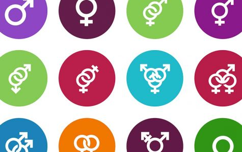 Letter to the Editor: Engendering Gender