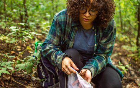 Photo series: UWL Mushroom foray