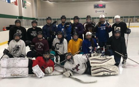 Club Close-Up: Women's Hockey Club