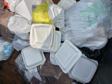 Trash in UWL dumpster.