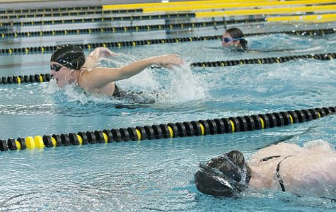 Women's swimming and diving snags win, men's team falls against Eau Claire