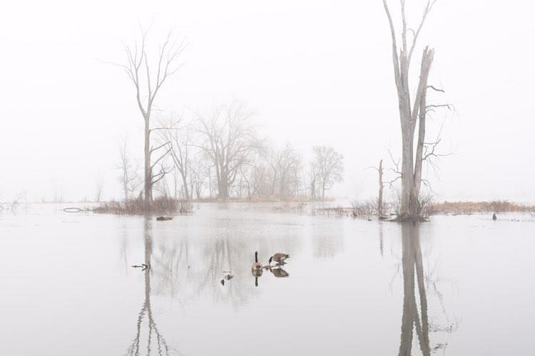 The La Crosse River Marsh.