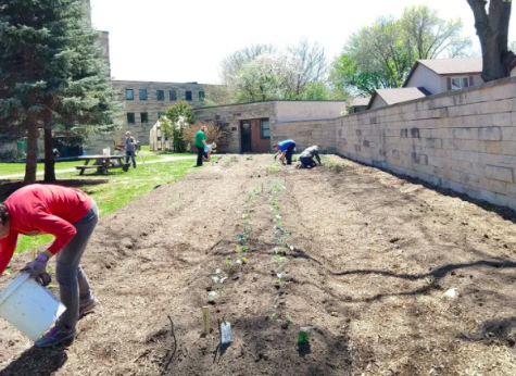 Photo retrieved from the La Crosse Area Victory Gardens.